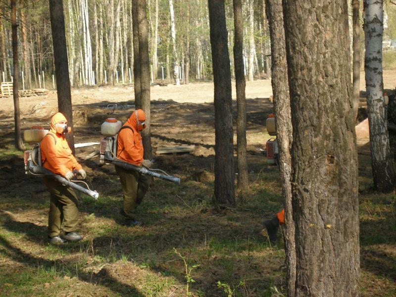 защита лесов от вредных организмов урология это отдельный